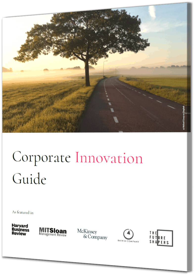 Corporate Innovation Guide Book Cover